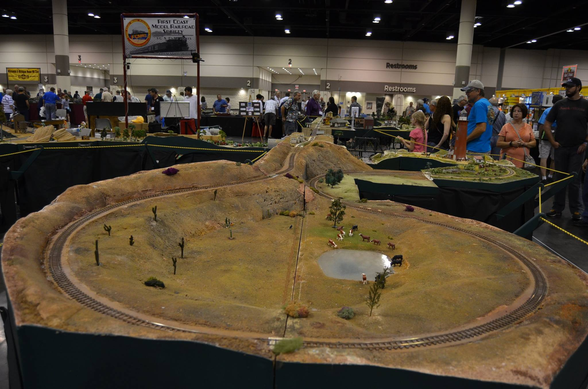 Tanglefoot Curve at the NTS 2017 layout.